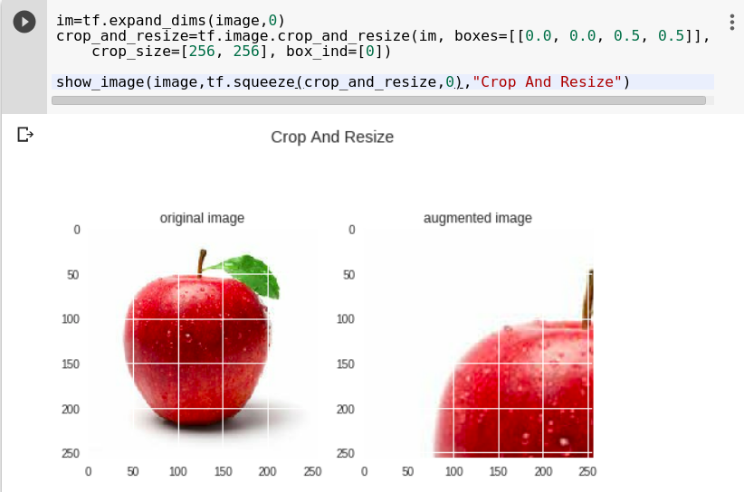 crops and resizes