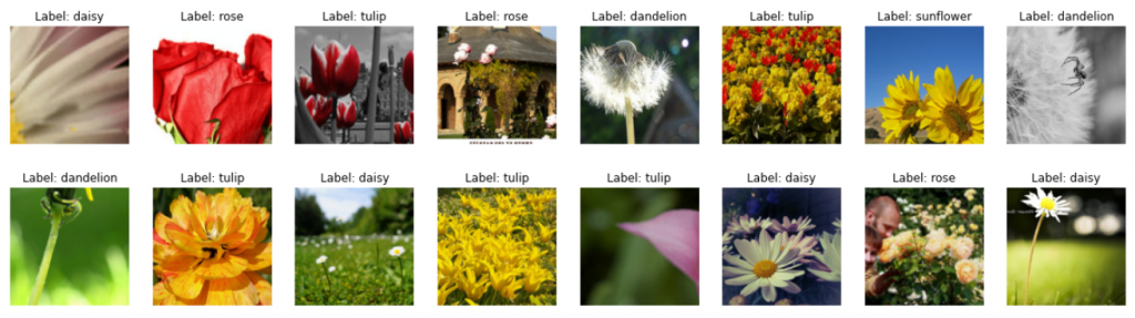 PyTorch Dataloader visualize images