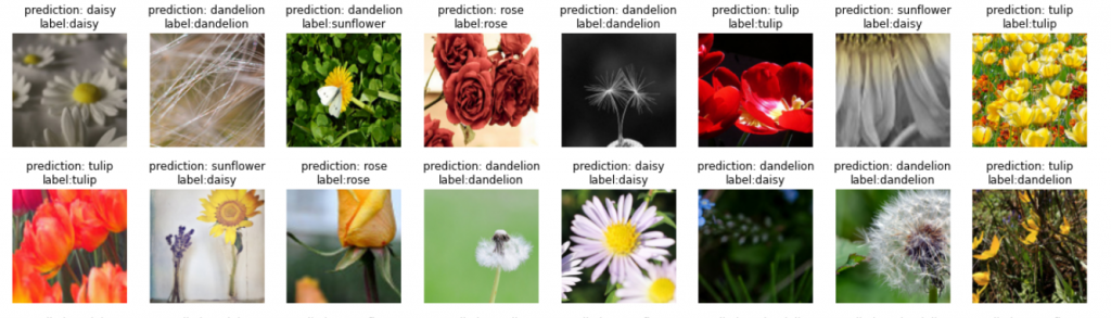PyTorch Predict Images